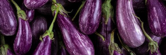 Fairy Tale Eggplants2